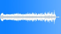 ANIMAL ALPACA MALE MATING CALL11 - sound effect