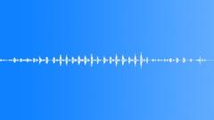 ANIMAL DOG GOLDEN RETRIEVER DOTTI PANT01 - sound effect