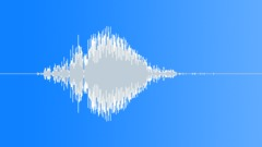 ANIMAL DOG LABRADOR BARK03 Sound Effect