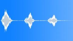 ANIMAL DOG POODLE MINIATURE02 BARK SEQUENCE06 Sound Effect