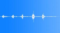 ANIMAL PIG LANDRACE PEACHES GRUNT SEQUENCE03 Sound Effect