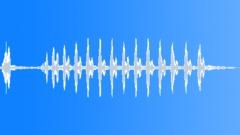 BIRD BROWN HONEY EATER CALL05 - sound effect