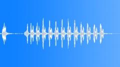 BIRD BROWN HONEY EATER CALL07 Sound Effect