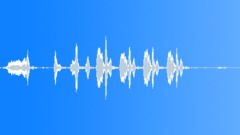 BIRD BROWN HONEY EATER CALL09 - sound effect