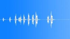 BIRD BROWN HONEY EATER CALL11 Sound Effect