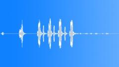 BIRD BROWN HONEY EATER CALL15 Sound Effect