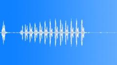 BIRD BROWN HONEY EATER CALL19 Sound Effect