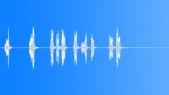 BIRD BROWN HONEY EATER CALL21 Sound Effect