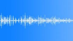 BIRD BROWN THORN BILL CALL Sound Effect