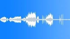 BIRD CHICKEN HIGHLINER BROWN CLUCK LONG06 - sound effect