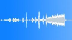 BIRD CHICKEN HIGHLINER BROWN CLUCK LONG08 - sound effect