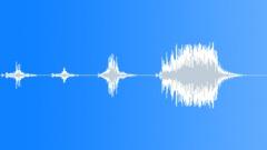 BIRD DUCK PEKING QUACK AGITATED01 Sound Effect