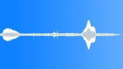 BIRD DUSKY MOORHEN CALL01 - sound effect