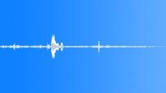 BIRD DUSKY MOORHEN SQUABBLING02 - sound effect