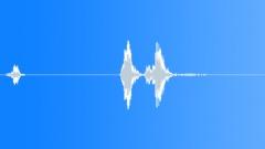BIRD HONEY EATER CALL01 Sound Effect