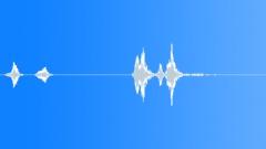 BIRD HONEY EATER CALL03 Sound Effect