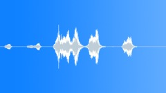 BIRD HONEY EATER CALL09 Sound Effect