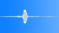 BIRD PEACOCK CALL03 - sound effect
