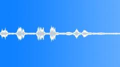 BIRD PEACOCK MIXED CALL03 - sound effect