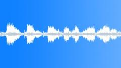 BIRD SILVER GULL CALL SEQUENCE02 Sound Effect