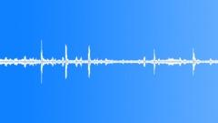BIRD SPARROWS Sound Effect