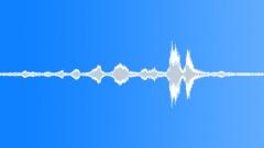 Stock Sound Effects of BIRD UNKNOWN WARBURTON CALL05