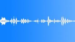 BIRDS COCKATOO SULPHA CRESTED FLOCK01 - sound effect