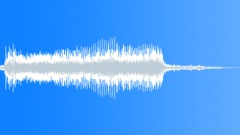 BIRDS IBIS AUSTRALIAN WHITE MATURE HONK04 Sound Effect