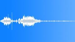 BIRDS IBIS AUSTRALIAN WHITE MIXED HONK02 - sound effect