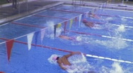 Stock Video Footage of Competition Swim Meet Circa 1975 (Vintage Film Super 8mm Home Movie) 461