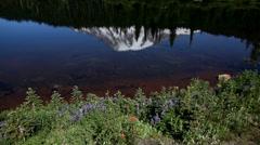 Mt Rainier National park Reflection Lake Stock Footage