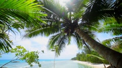 Nice View From A Little Bit Above Of Beach In Paradise - stock footage