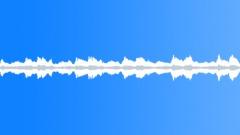 DIDGERIDOO TRADITIONAL STRAIGHT RHYTHMIC DRONE03 LOOP - sound effect