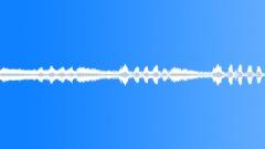 INSECT CICADAS TOKYO SUMMER02 - sound effect