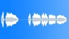KAZOO VOCALISATION03 STEREO Äänitehoste