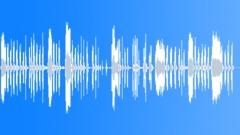 KAZOO VOCALISATION19 STEREO Äänitehoste
