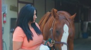 Stock Video Footage of Brunette woman and her horse close ups - 10