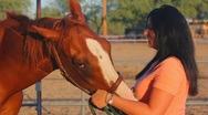 Stock Video Footage of Brunette woman and her horse close ups - 1