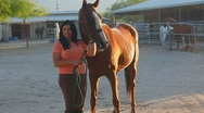 Stock Video Footage of Brunette woman and her horse - 4