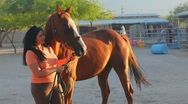 Stock Video Footage of Brunette woman and her horse - 3