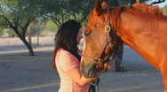 Stock Video Footage of Brunette woman and her horse - 2