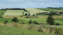 Pastoral Landscape. - stock footage