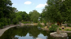 Blue sky and trees reflecting at pond Stock Footage