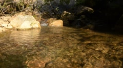 Creek water close up Stock Footage