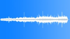 Expectant crowd background with birdsong, footsteps on pavement and speech - - sound effect