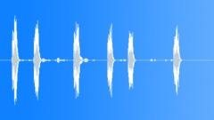 Pet Shop: Cockatiel calling. Sound Effect