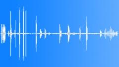 Single hen. - sound effect