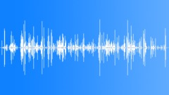 Three horses on gravel. Restless. (Studio recording) - sound effect