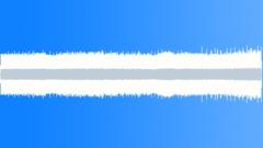Rainforest - 01.00hrs Sound Effect
