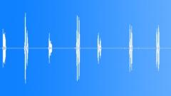 Duck. (Comedy Spot Effect.) Sound Effect
